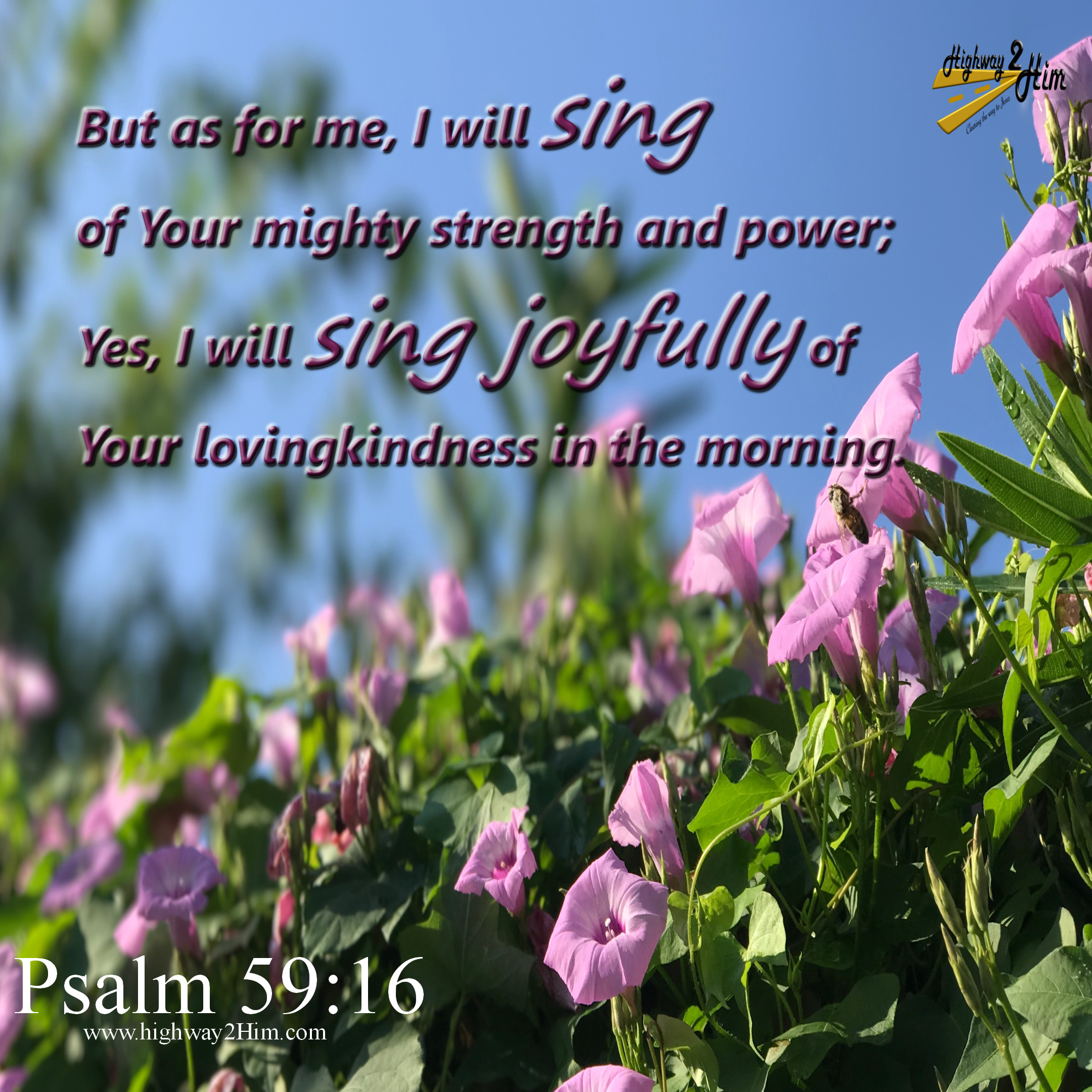 Psalm 59 16 17 But I Will Sing Of Your Strength Yes I: From My Prayer Closet To Yours
